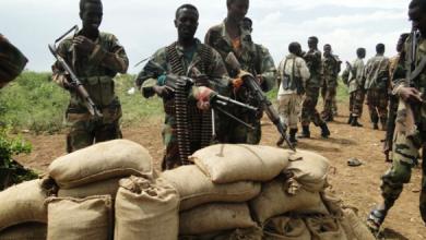 Photo of 8 militants killed in southern Somalia