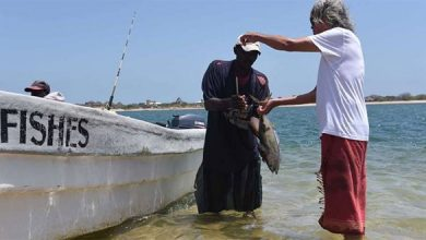 Photo of Kenya lifts ban on fishing near Somalia border