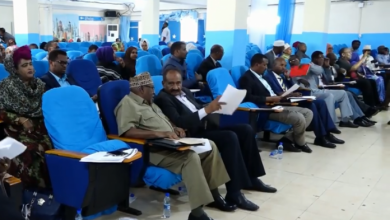 Photo of Somali Parliament Debates Labour And Manpower Development Bill