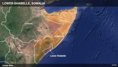 Photo of At Least 7 Killed in al-Shabab Attack on Somali Base