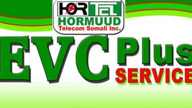 Photo of EVC Plus Service Crashes, Cutting Millions of Somalis from their Mobile Money Pipeline
