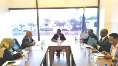 Photo of Somali M Discusses Relations And Cooperation With Dutch Ambassador