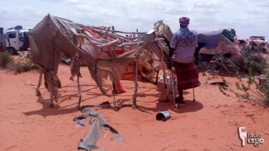 Photo of Network outage prevents drought-hit families in southern Somalia's Elwak from buying food