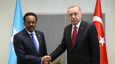Photo of Turkish, Somali presidents meet in New York