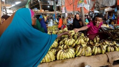 Photo of Somalia economic growth likely to inch up this year, World Bank says