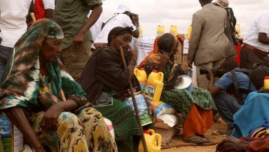 Photo of 6.3 million Somalis facing food shortage by December – FAO