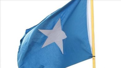 Photo of Somalia protests 'outdated' UN arms embargo