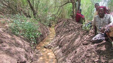 Photo of Assessing canals and restoring irrigation in Somalia