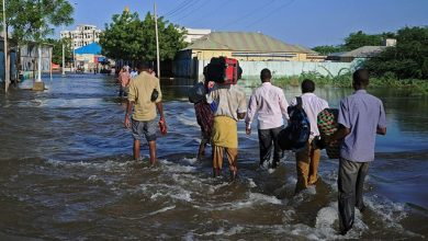 Photo of Somali charity fears flooding may trigger disease outbreaks