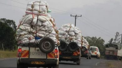 Photo of Two Kenyans ferrying miraa to Garissa kidnapped by suspected al-Shabaab militants