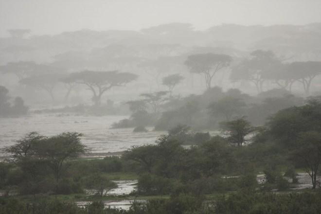 Photo of Heavy rains and fierce winds hit Puntland, cut off transport as cyclone PAWAN makes landfall