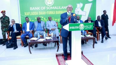Photo of Somaliland government launches mobile platform for salary payments
