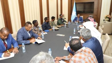 Photo of Somali PM directs police, army to secure Turkish road contractors