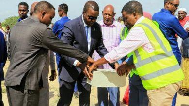 Photo of Mogadishu mayor launches livestock market construction, warns against random livestock trade in the city