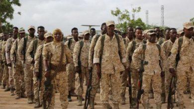 Photo of Somalia says kills 35 al-Shabab militants