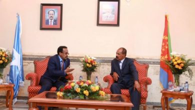 Photo of Somali President Meets With His Eritrean Counterpart