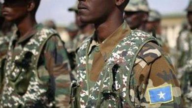 Photo of 33 al-Shabaab militants killed in Somalia