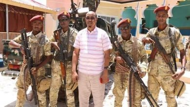 Photo of FGS aided my escape, Janan says, 'reorganising' troops in Belet-Hawo