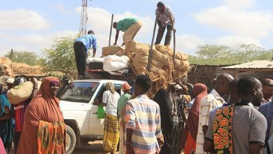 Photo of Mandera miraa traders protest as ban imposed over virus