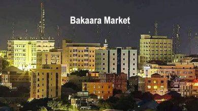 Photo of Chaos profiteers; how Somalia's businessmen are it's main nemesis?