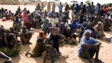 Photo of Arab Coalition denies Houthi allegations that Saudi deported 800 Somalis to Yemen
