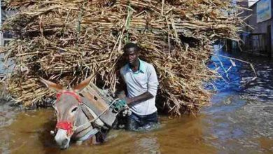 Photo of Somali Beledweyne city cut off by flooding