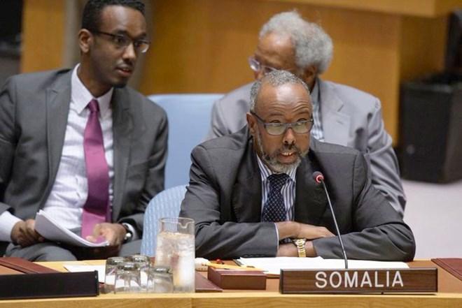 Photo of Somalia's ambassador at UN elected UNGA Vice President