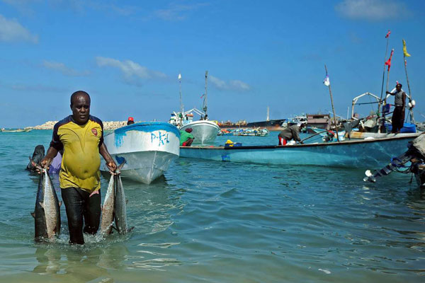 Photo of Foreign trawlers, illegal fishing, staff shortage deny Somalia $300m in revenue