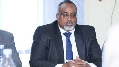 Photo of HirShabelle president Waare appoints team to head upcoming polls