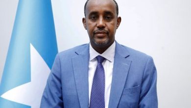 Photo of BREAKING: All MPs present endorse Mohamed Roble as new PM